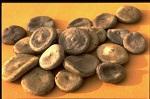 nux-vomica Nux vomica as Constipation Remedy