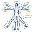 physicalbody The Vital Approach -,Level 1: The Physical Body