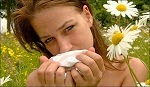 hayfeverhomeopathy Homeopathic Remedies for Hay fever Treatment