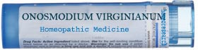 ONOSMODIUM-VIRGINIANUM-homeopathic-remedy Back Pain Homeopathic Medicine - Remedy Finder