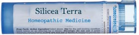 Silicea-terra-homeopathic-remedy Cancer Treatment Homeopathic Remedy selection