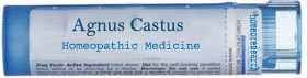agnus-castus-homeopathic-remedy Homeopathic Treatment for Impotence for Permanent result