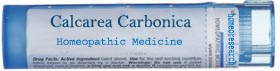 calcarea-carbonica-homeopathic-remedy Homeopathy Obesity Treatment - Remedy Finder