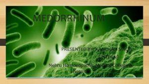 medorrhinum-homeopathy-hiv-300x169 medorrhinum-homeopathy-hiv