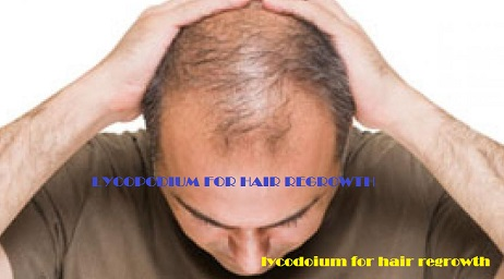 Lycopodium for Hair Regrowth