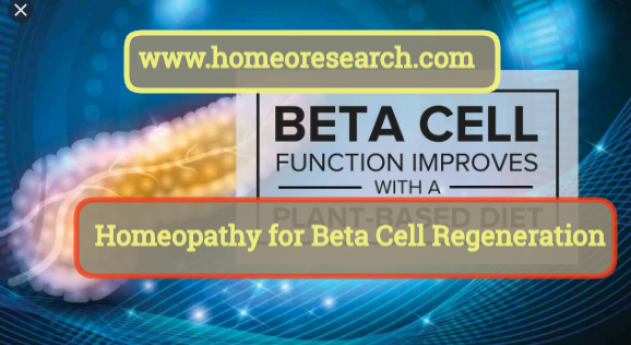 Homeopathy for beta cells regeneration in the pancreas
